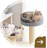 猫用キャットタワー