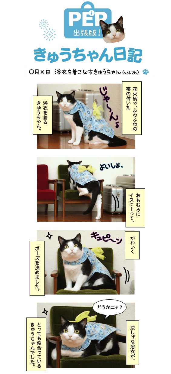 きゅうちゃん日記