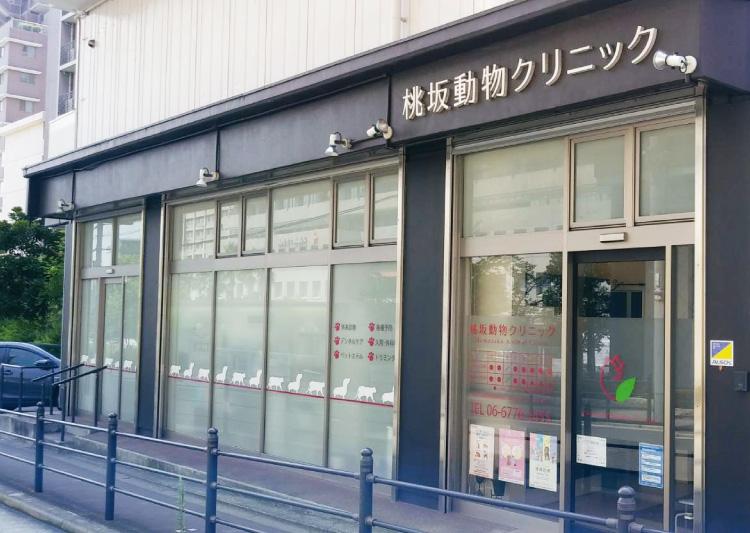 桃坂動物病院