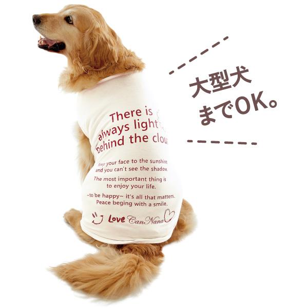メッセージ適温Tシャツは小型犬~大型犬用まで着用可能。