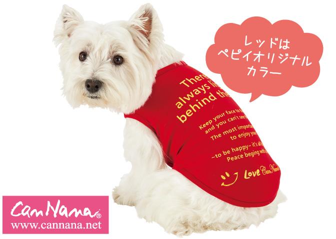 メッセージ適温Tシャツは1年中快適な温度を保つアウトラスト素材