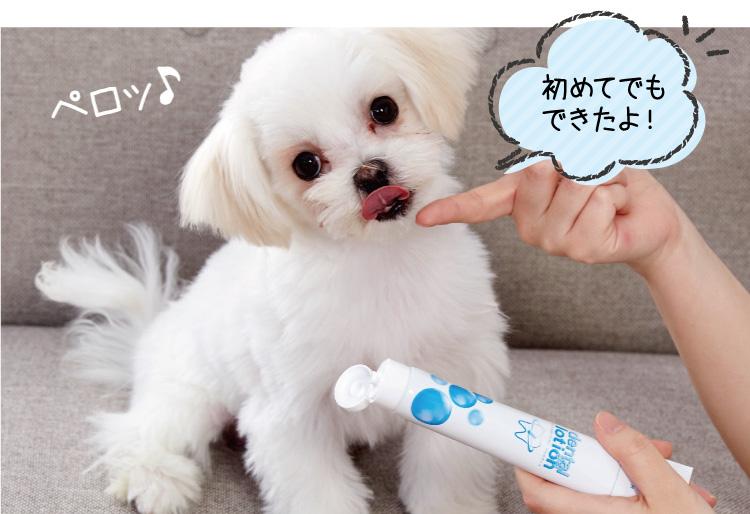 コスモスラクトデンタルは体を元気にする安心成分「乳酸菌パワー」で口臭&歯周病予防!