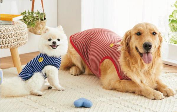 小型犬・中型犬・大型犬までサイズ展開豊富