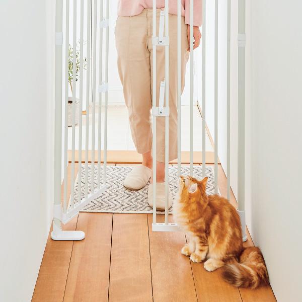 玄関や廊下に。愛猫の脱走・いたずらを防止