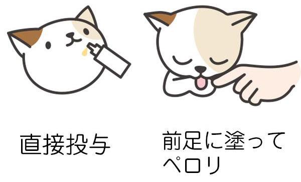 口に直接投与する他、愛犬の鼻先につけて舐めさせたり、飼い主さんの指につけて舐めさせてもOK