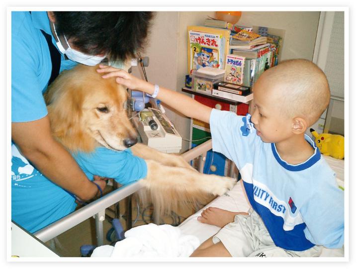 日本動物病院協会は、社会に貢献する取り組みのひとつとして、CAPP活動を行なっています