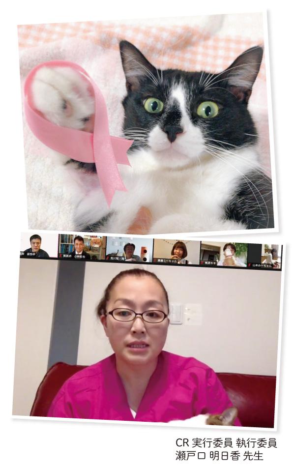 10月22日「キャットリボンの日」オンラインイベントの瀬戸口明日香先生