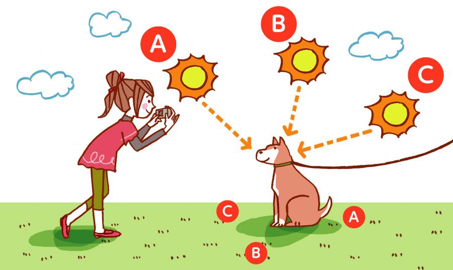 太陽の差す位置で印象が変わります