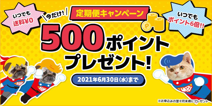 定期便キャンペーン 今だけ500ポイントプレゼント!
